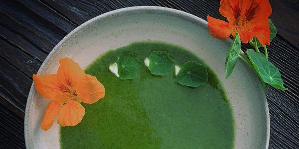soup-5480400_1920a